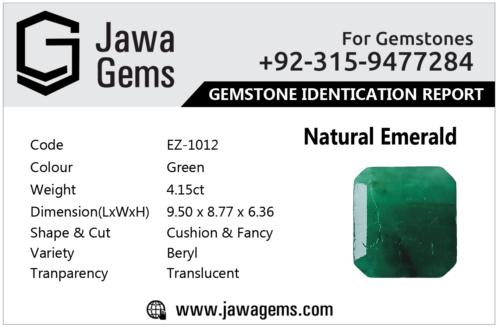 Emerald Report Card E-1012